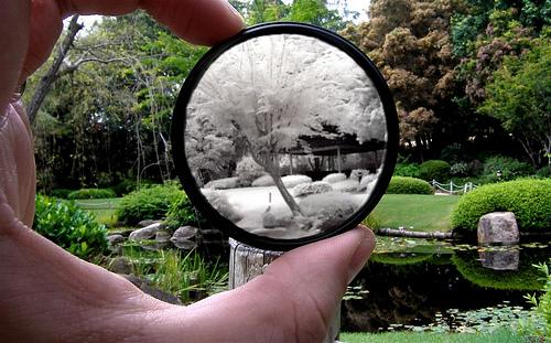 filtro infrarrojo Desarrollo Personal: ¿Qué son los Paradigmas?
