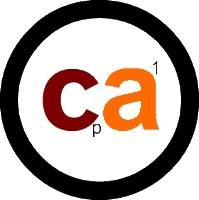 CA Desarrollo Organizacional: Artesanía en Red