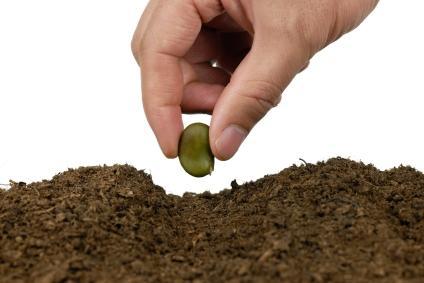 mano plantando semilla GTD: Las Acciones de Hoy son los Proyectos de Mañana